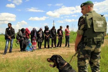 Пограничники Мукачевского отряда в 2015 задержали 655 нелегалов