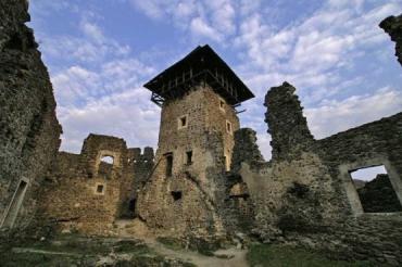 Обсуждался вопрос сохранения Невицкого замка на Закарпатье