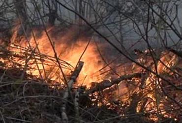 Пожар в Румынии вызван человеческим фактором