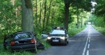 В Польше Polo на полном ходу врезался в дерево