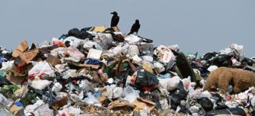 Уряд виділив кошти на рекультивацію смітника в селі Барвінок