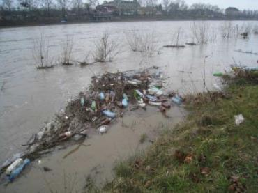 Від «его» до «еко»: проблема сміття на Закарпатті