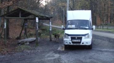 Проблемні маршрутки в Ужгороді. Давайте спати під школою?