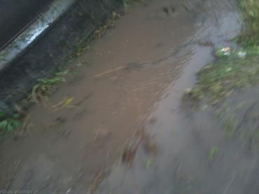 Рівень води в Латориці може досягти історичного максимуму 2001 року.
