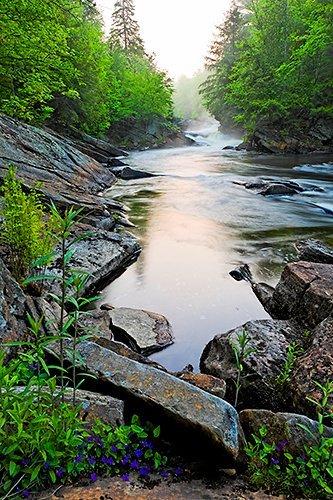 На реках Закарпаття продолжается снижение уровней воды