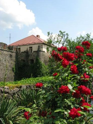 Краєзнавчий музей в Ужгороді 19 червня відсвяткував свій ювілей – 65-річчя