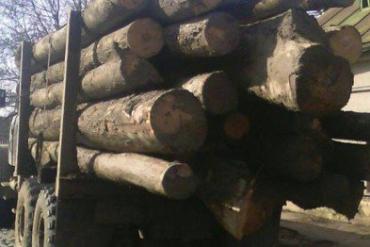 Груз указывался как техническая древесина