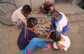 Дети улицы: права, гарантии, защита