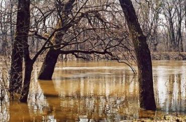 Подтопленные районы Закарпатья остаются без внимания правительства