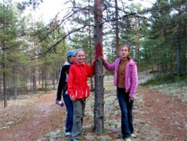 Промаркированные деревья на маршруте в горах