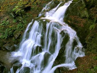 Водоспад Шипот потерпає від сміття