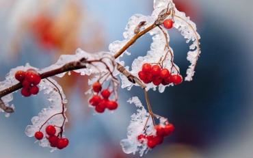 Яка температура чекає восени на українців
