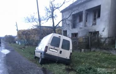 Авто смертельно збило корову на Виноградівщині