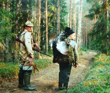 """Лесной фонд Закарпатья """"уменьшился"""" на 20 тыс. га"""