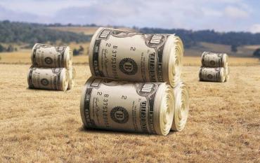 В Украине наблюдается снижение индекса объема сельскохозяйственного производства