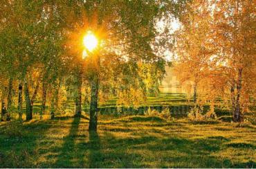 Осінь покаже свій примхливий характер