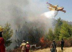 В результате крушения самолета пилот погиб