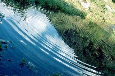 В Закарпатье очередной трагический случай на воде
