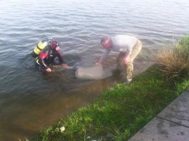 В Закарпатье водолазы нашли тело 24-летнего утопленника