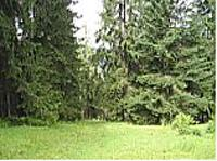 Во время майских праздников ограничивается доступ посетителей к лесным массивам страны