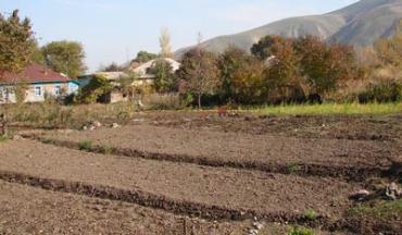 Стоимость незаконно изьятых земель — более 21 млн. грн.