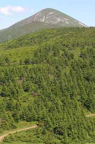 Во время восхождения на гору Говерла заблудились 2 туриста со Львова