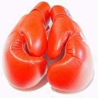 Юні боксери Закарпаття провели десять боїв і всі виграли