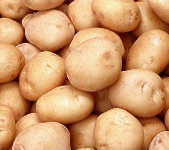 Картофель горцы называют репой и гуцульским хлебом