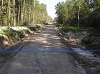 Вперше в Україні розроблено модельну концепцію транспортного освоєння лісів