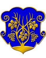 Каждый второй из 229-ти посланцев Ужгорода стал призером областных олимпиад