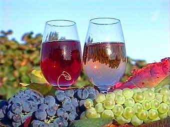 Вино – самый здоровый гигиенический напиток