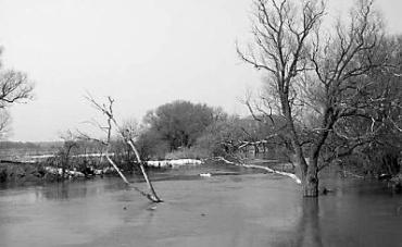 Этой весной в Украине наводнение маловероятно