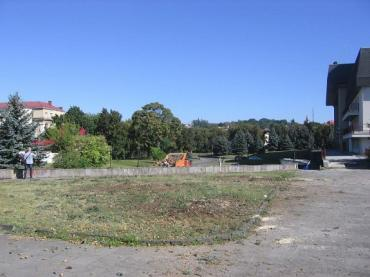 В Ужгороде возле облмуздрамтеатра вырубили здоровые деревья