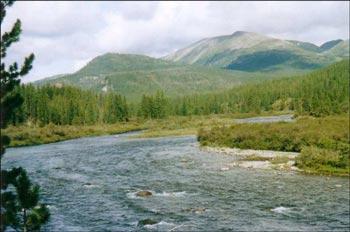 У румунському м.Окна Шугатаг говорили про якість води річки Тиса