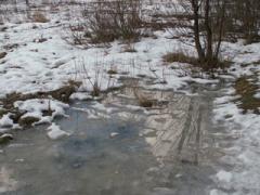 В Карпатах мокрый снег и снег, вьюга