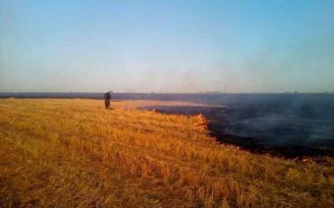 Масштабна пожежа розгулялася неподалік від Миколаєва