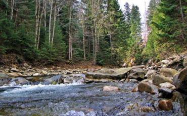 У західноукраїнських областях очікується підняття рівня річок