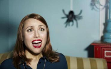 Як попрощатися з павуками раз і назавжди