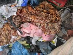 Закарпатка викинула новонародженого в сміття