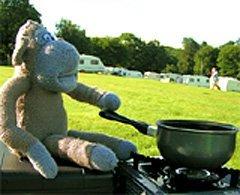 Приготовление горячей пищи отличает людей от обезьян