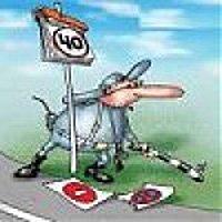 ГАИ инициирует увеличение штрафов за пьянство за рулем до 10 тысяч гривен