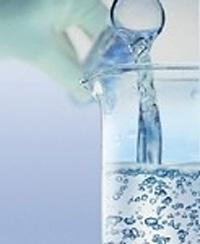 Перечинский лесохимкомбинат экспортировал примерно 1,5-2 тыс. т технического спирта в месяц