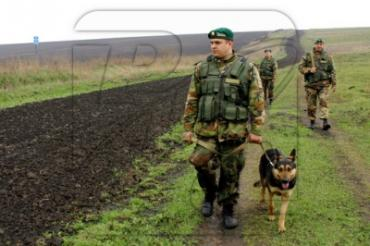В 50 метрах от границы закарпатские пограничники задержали грузинских нелегалов