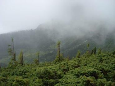 7 туристов заблудились во время восхождения на Говерлу