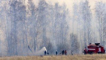 В Костромской области горит деревня Михайловица