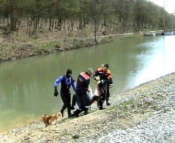 В Иршавском районе утонул ребенок