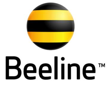Beeline дарит бесплатное общение для ветеранов