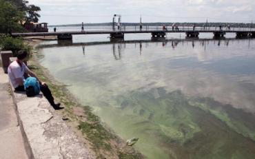 Смертельно небезпечна риба з'явилася в українській річці