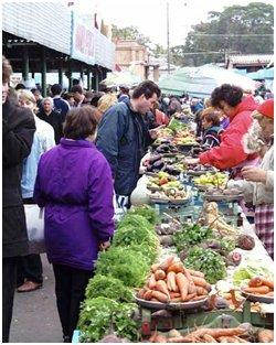 Закарпатье является одним из поставщиков ранних овощей на рынки Киева