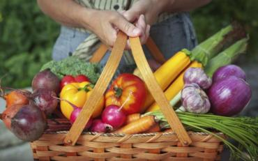 Як відрізнити продукт з ГМО чи без нього